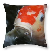 Lucky Koi 1 Throw Pillow