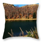 Lure Throw Pillow