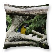 2 Macaws Framed By Tree Branches Inside The Jurong Bird Park Throw Pillow