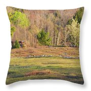 Maine Blueberry Field In Spring Throw Pillow by Keith Webber Jr