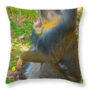 Mandrill Throw Pillow