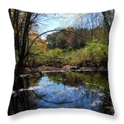 Mansfield Hollow Lake Throw Pillow