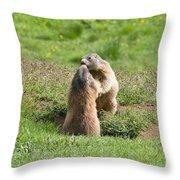 Marmots Throw Pillow