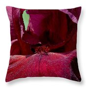 Maroon Iris 2 Throw Pillow