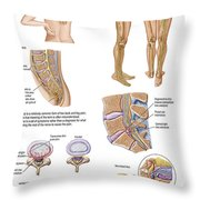 Medical Chart Showing The Signs Throw Pillow