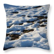 Melting Snow On Lawn Throw Pillow