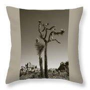 Joshua Tree National Park Landscape No 2 In Sepia Throw Pillow
