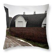 Michigan Barn With Grain Bins Rainy Day Usa Throw Pillow