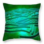 Microscopic View Of Legionella Throw Pillow