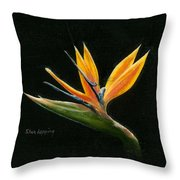 Midnight Paradise Throw Pillow