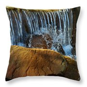Mini Falls Throw Pillow