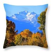 Montana Fall Throw Pillow