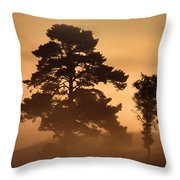 Moorland In The Morning Mist Netherlands Throw Pillow