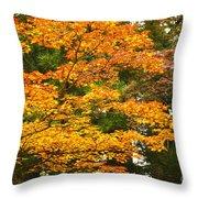 Mount Koya Koya San Japan  Throw Pillow