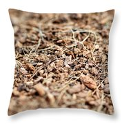 Mulch Throw Pillow
