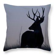 Mule Deer Buck At Sunset Throw Pillow