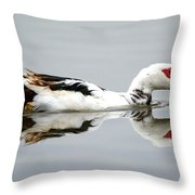Muscovy Water Reflection Throw Pillow