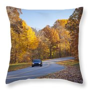 Natchez Trace Throw Pillow