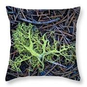 Natural Art Throw Pillow
