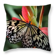 Nature's Treasures  Throw Pillow
