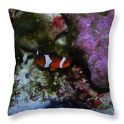 Nemo Throw Pillow