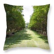 Norfolk Botanical Garden 2 Throw Pillow