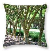 Norfolk Botanical Garden 6 Throw Pillow