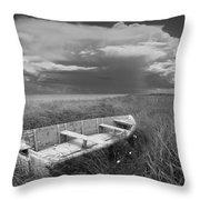 Of Land Sea And Sky Throw Pillow