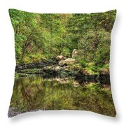 Okertal Throw Pillow