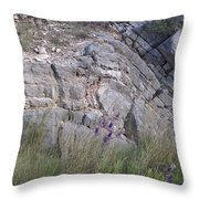 Oklahoma Rock Show And Flower Free For All Iv Throw Pillow