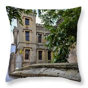 Peek Through The Tree's Of Old City Jail Throw Pillow