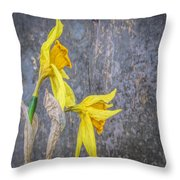 2 Old Daffodils Throw Pillow