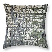 Old Painted Wood Abstract No.6 Throw Pillow