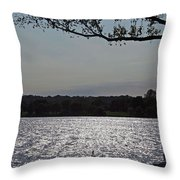 On A Glistening River Throw Pillow