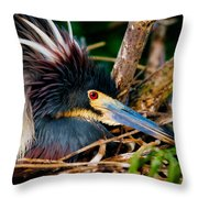 On The Nest Throw Pillow
