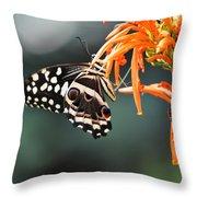 Orchard Swallowtail Throw Pillow
