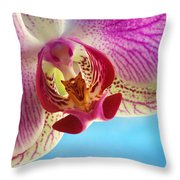 Pink Orchid Flower Details Throw Pillow