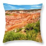 Painted Desert National Park Panorama Throw Pillow