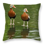 Pair Black-bellied Whistling-ducks Throw Pillow