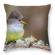 Pale-edged Flycatcher Throw Pillow