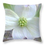 Peace- Throw Pillow