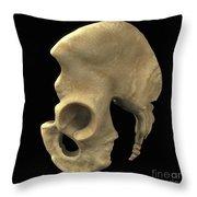 Pelvic Bones Male Throw Pillow