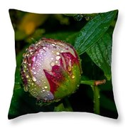 Peony With Rain Drops Throw Pillow