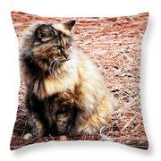 Pine Needle Kitty Throw Pillow