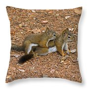 Pine Squirrel Throw Pillow