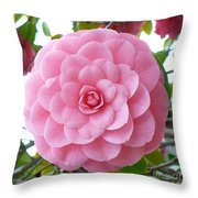 Pink Camellia Square Throw Pillow