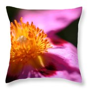 Pink Rockrose Throw Pillow