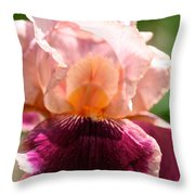 Pink Sunshine Throw Pillow