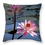 Pink Water Lily In The Spotlight Throw Pillow