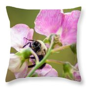 Pollination Nation II Throw Pillow